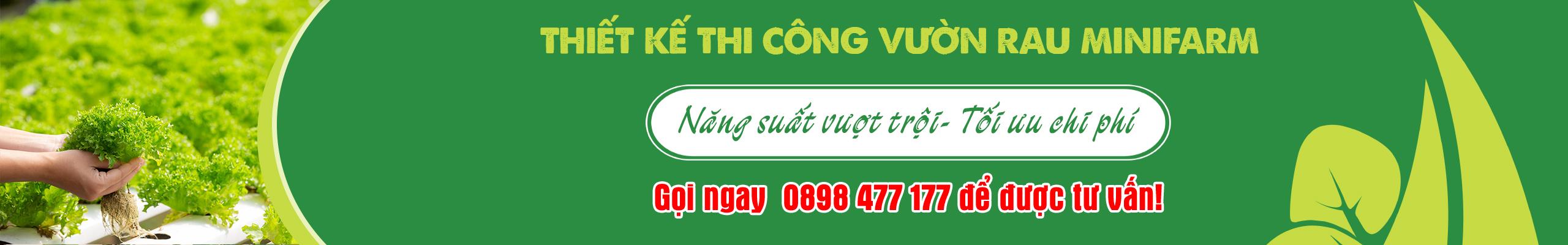 Thiet-ke-thi-cong-vuon-rau-thuy-canh-minifarm