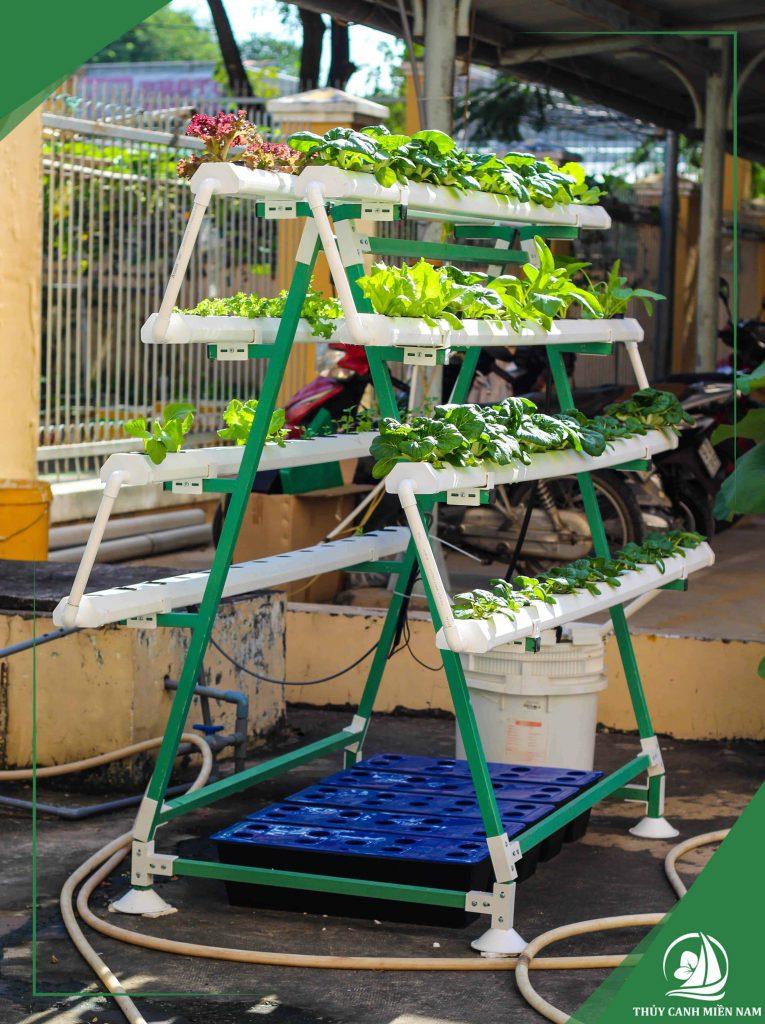 5 mô hình trồng rau sạch tại nhà phố