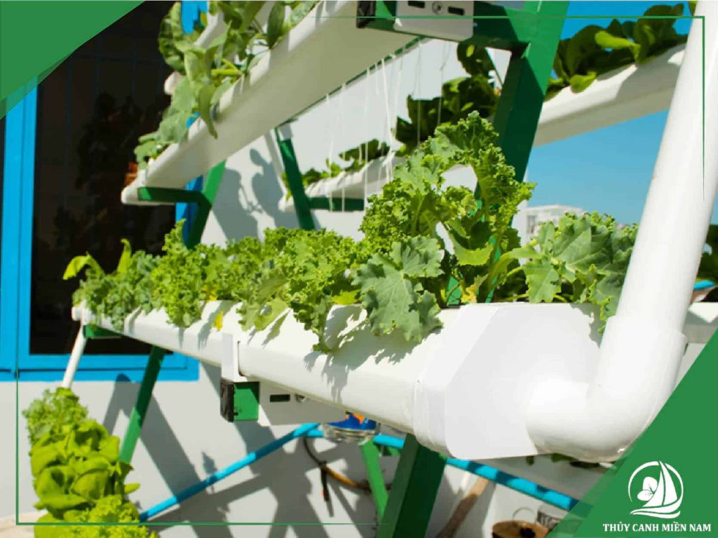 Vị trí lắp giàn cần đảm bảo tối thiểu 4-5h chiếu sáng mỗi ngày và Cách trồng rau thuỷ canh đơn giản