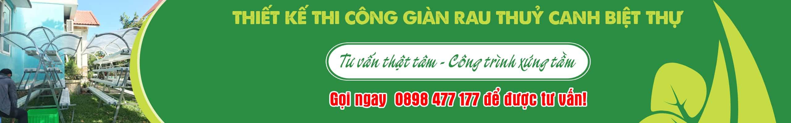 Thiet-ke-thi-cong-vuon-rau-thuy-canh-cho-biet-thu