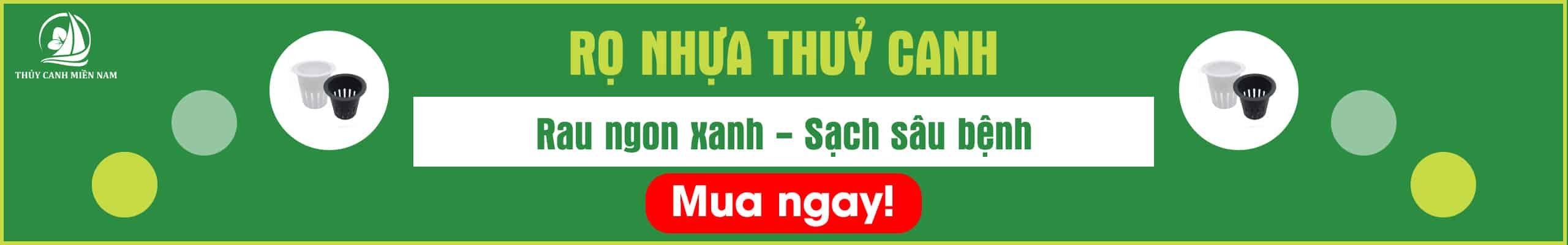 ro-nhua-thuy-canh