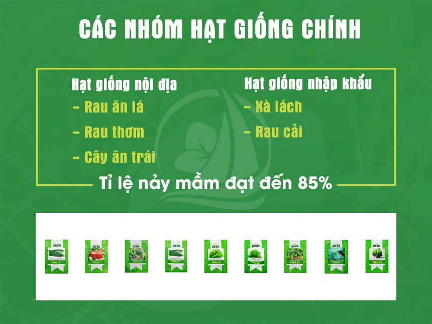 cac-nhom-hat-giong-thuy-canh-chinh