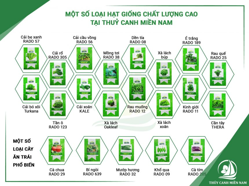 mot-so-loai-hat-giong-thuy-canh-chat-luong-cao