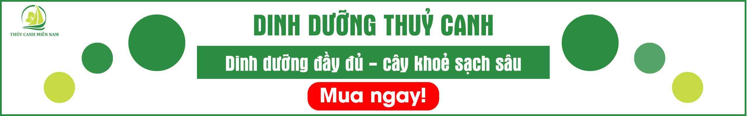 dinh-duong-thuy-canh