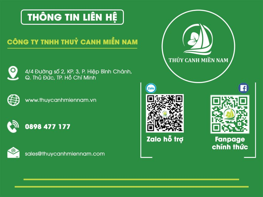 thong-tin-lien-he-thuy-canh-mien-nam