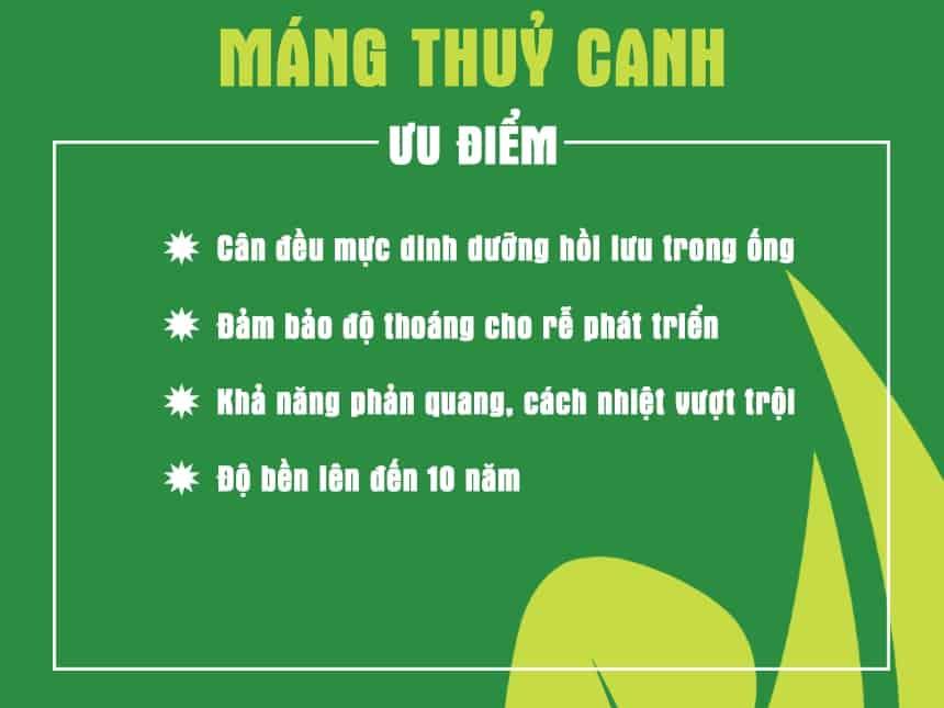 uu-diem-vuot-troi-cua-mang-thuy-canh-luc-giac